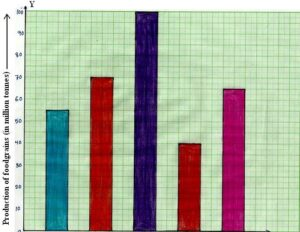 What is the Bar Graph